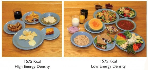 high and low energy density food