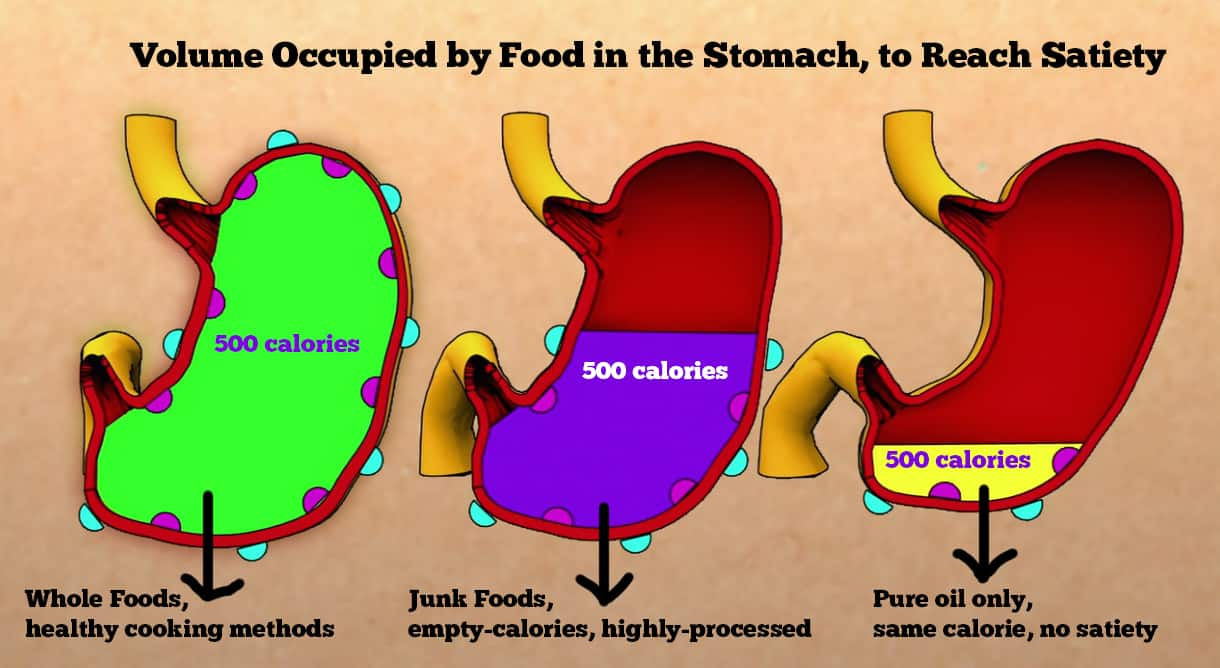 The density of food in our stomach